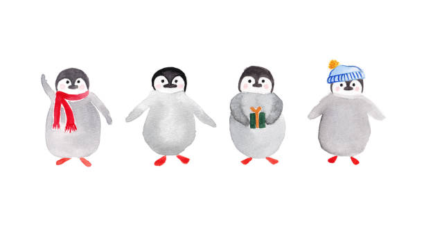 Watercolor Christmas Penguins Isolated on White Background vector art illustration