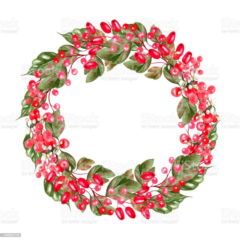 Watercolor Christmas Wreath With Hips Of Dog Rosebranches