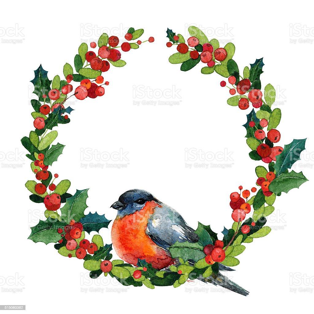 Akwarela Boże Narodzenie Wieniec Z Czerwoną Zima Ptak Gil Zwyczajny