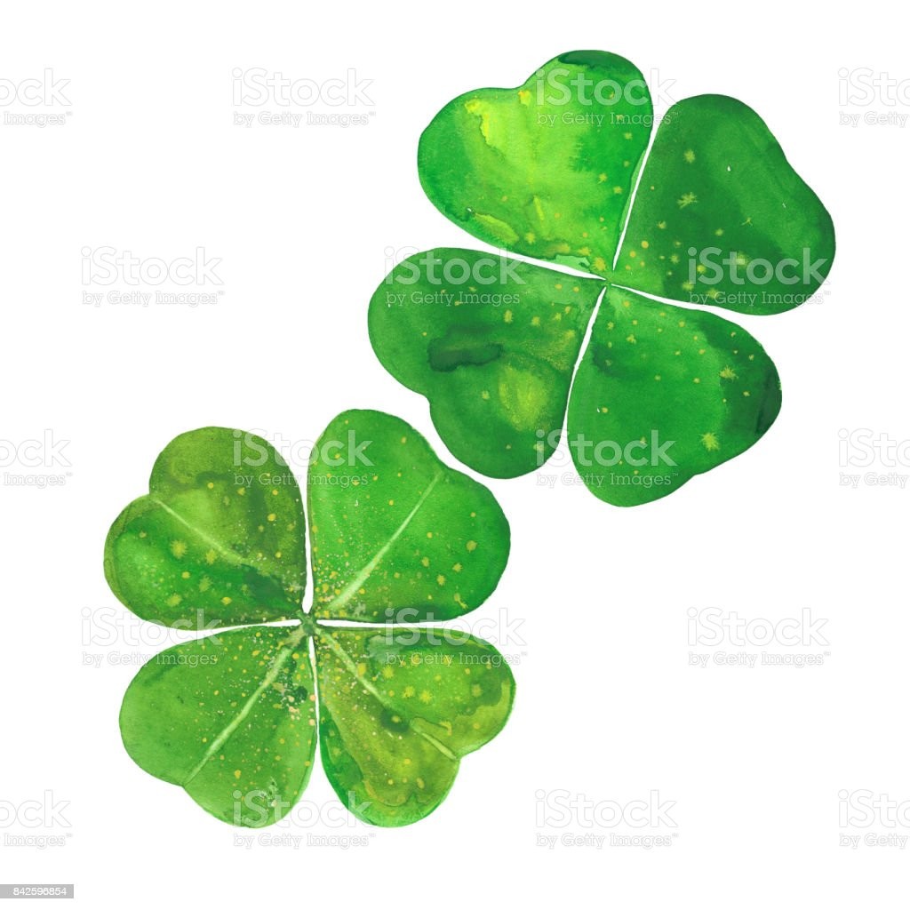 watercolor clover leaves vector art illustration