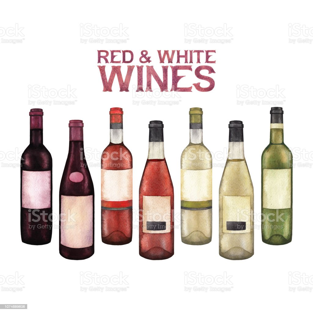 Watercolor Collection Of Red And White Wine Bottles Stock Illustration Download Image Now Istock
