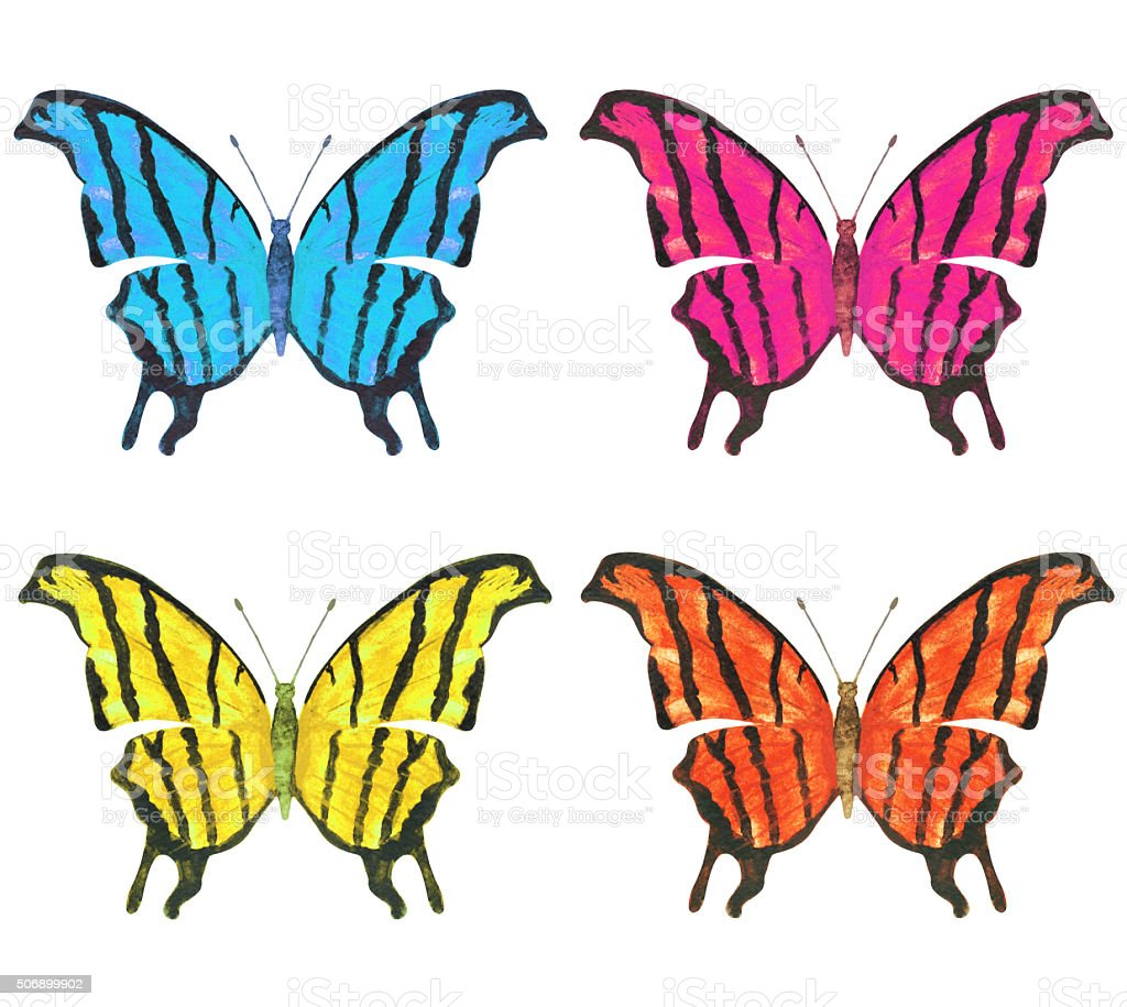 Watercolor colorful butterflies vector art illustration