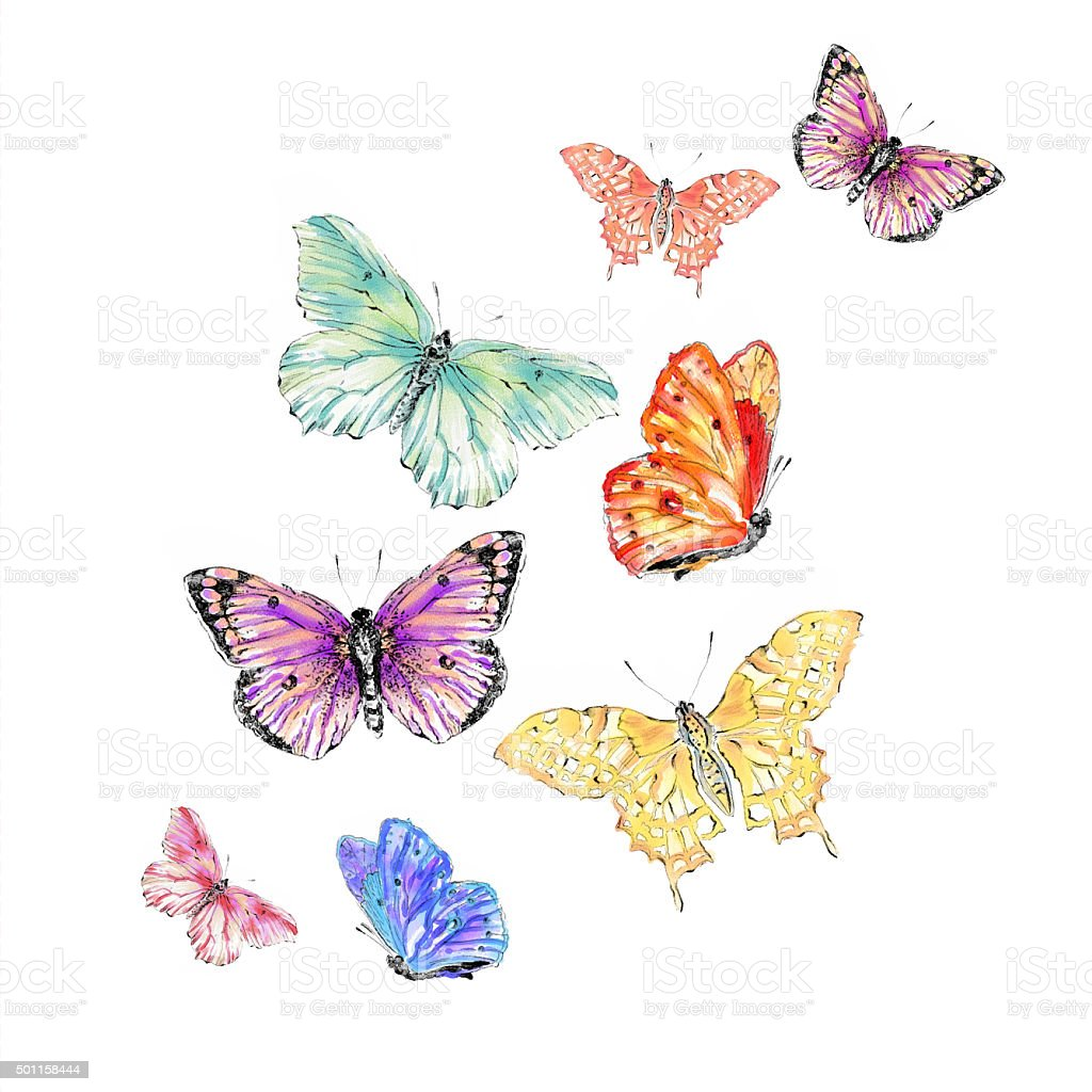 Watercolor Colorful Butterfly Illlustration vector art illustration