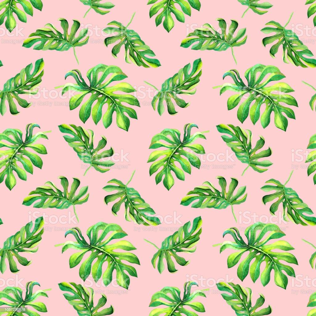 Aquarelle Motif Floral Colore Avec Monstera Vert Feuilles Sur Fond