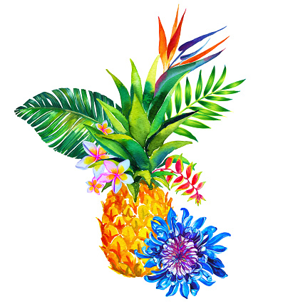 watercolor composition with tropical flowers, leaves, and pineapple.