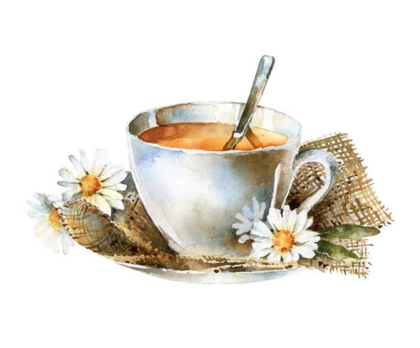 illustrazioni stock, clip art, cartoni animati e icone di tendenza di watercolor cup of tea with chamomile - mika