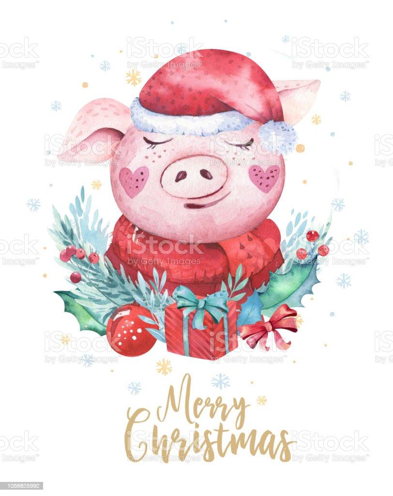 Sulu Boya Sirin Domuz Sembolu 2019 Illustrasyon Izole Komik