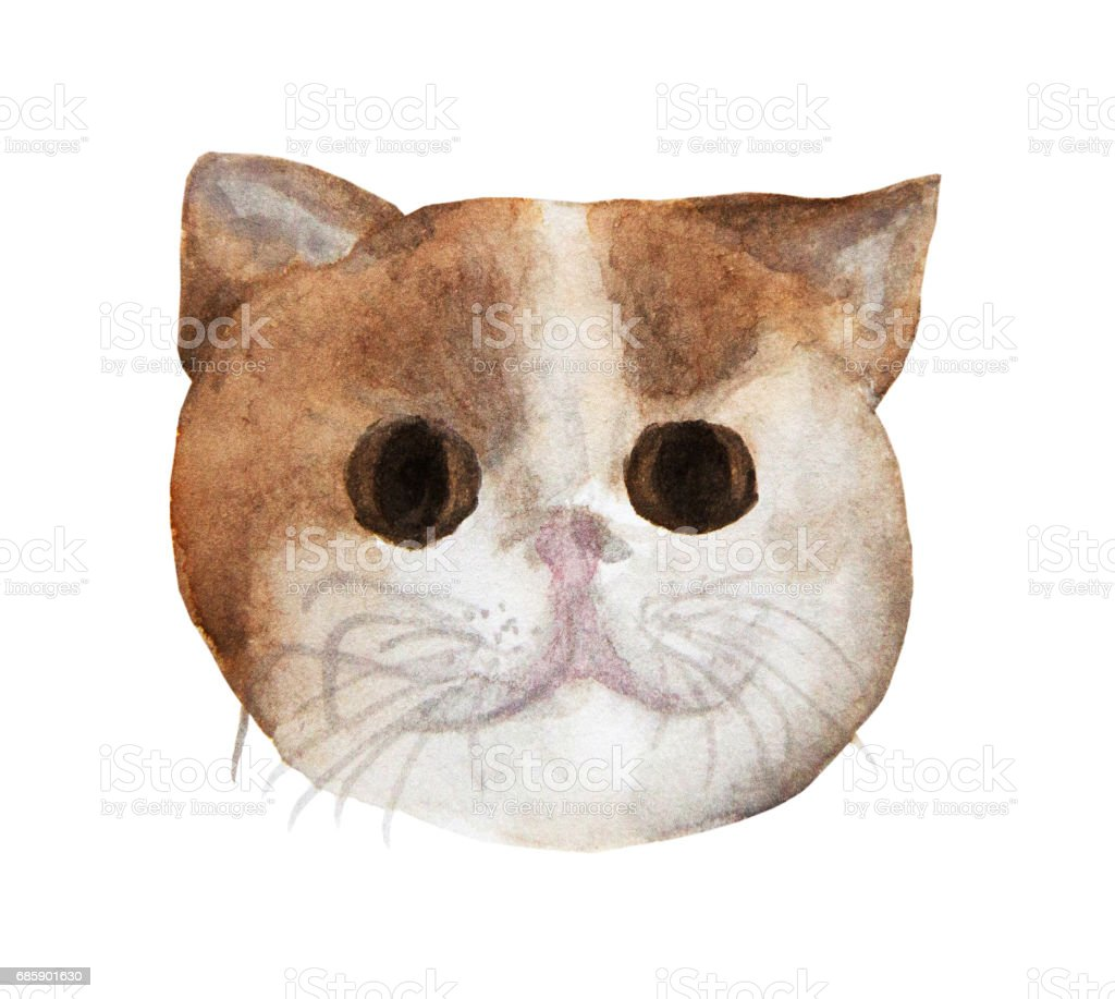 Watercolor Drawing A Cute Cat stock vector art