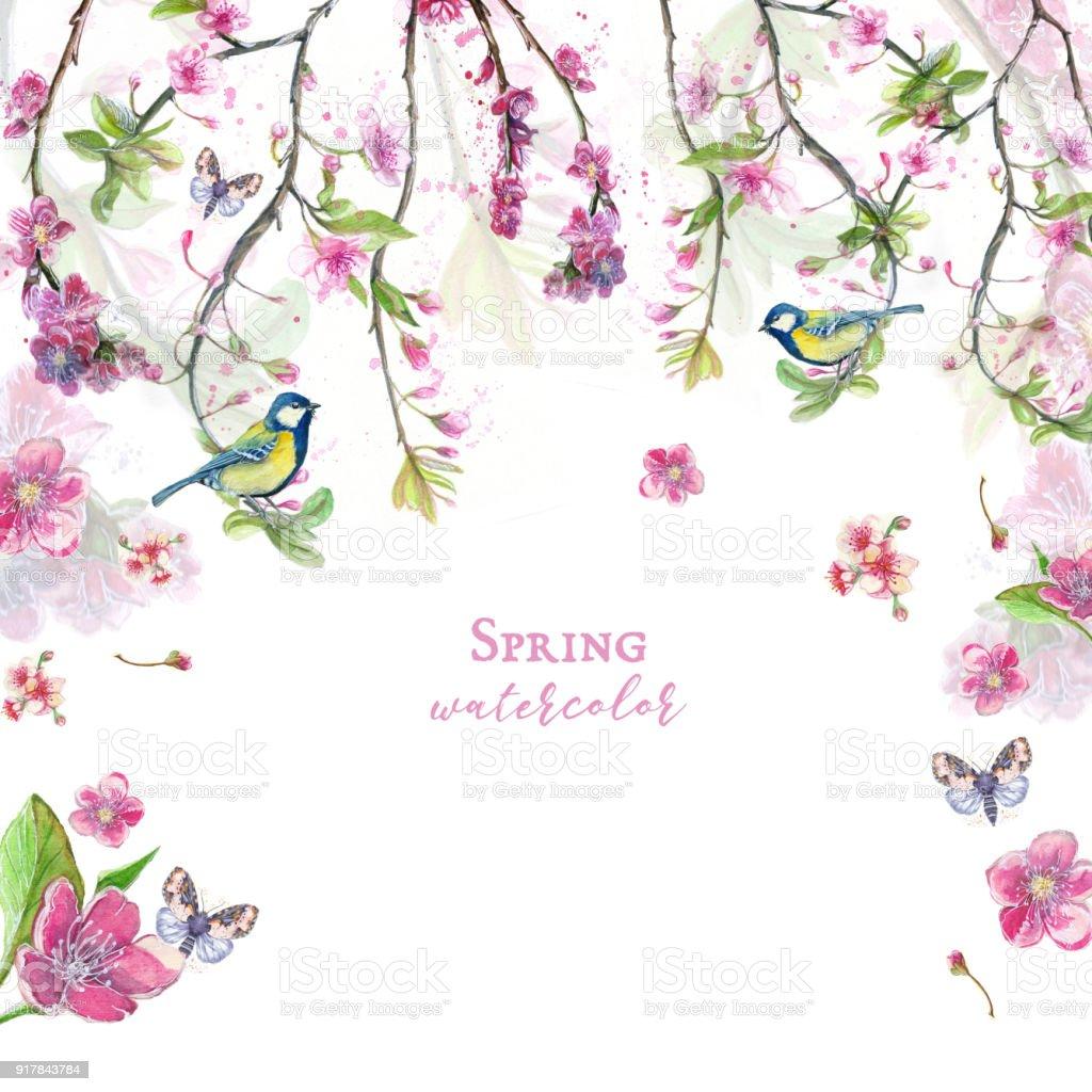 Ilustración De Acuarela Dibujo De Flores De Cerezo Cerezo Cerezo