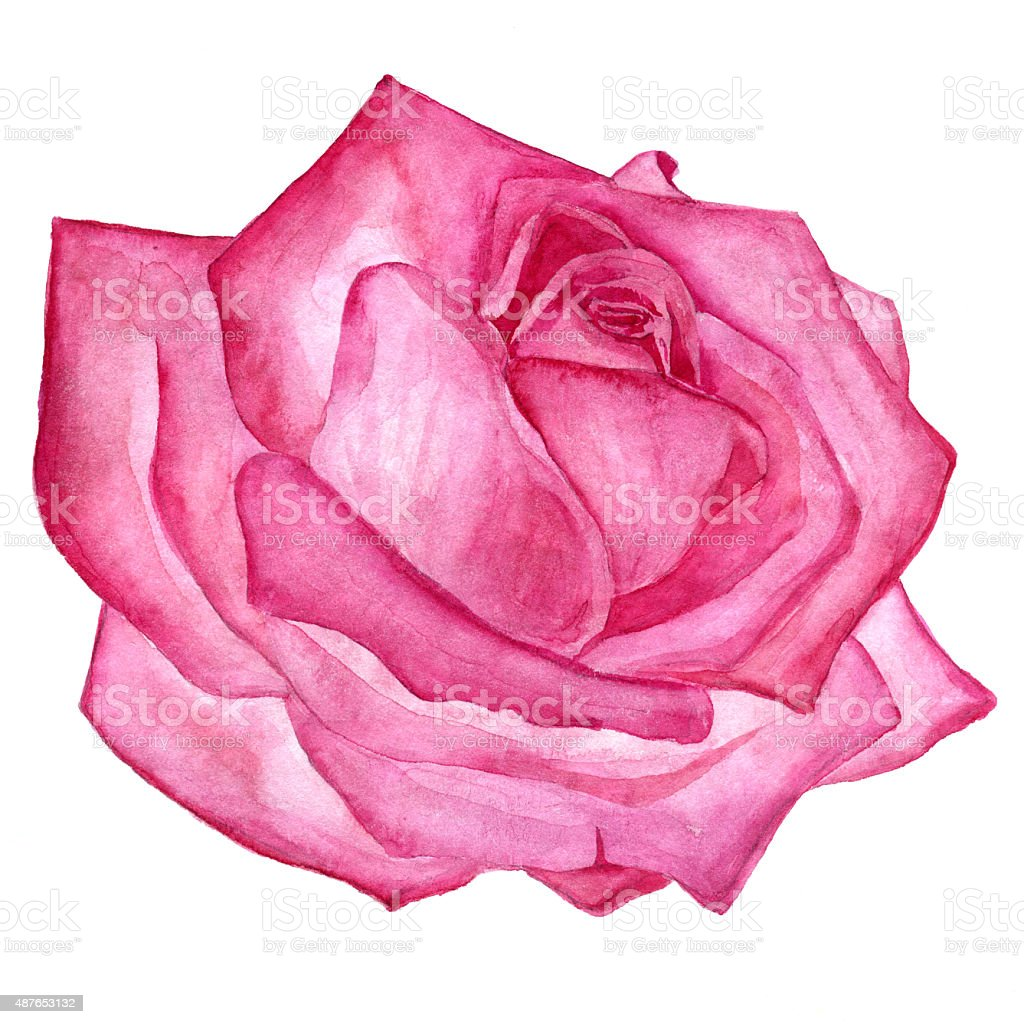 how to draw a complicated rose