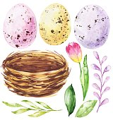 Watercolor Easter eggs, nets, herbs and flowers. Watercolour clip art illustration.