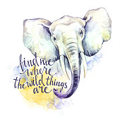 Watercolor elephant with handwritten inspiration phrase. African animal. Wildlife art illustration. Can be printed on T-shirts, bags, posters, invitations, cards, phone cases
