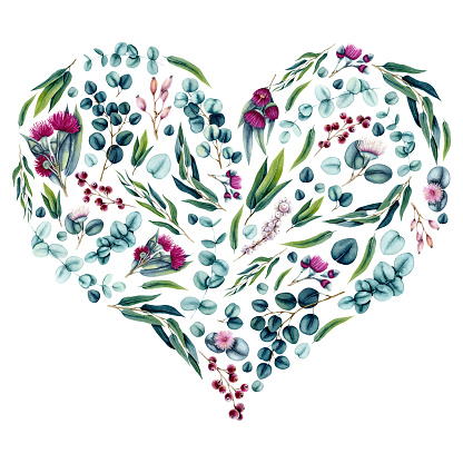 Watercolor Eucalyptus Leaves and Flowers and Heart Shape