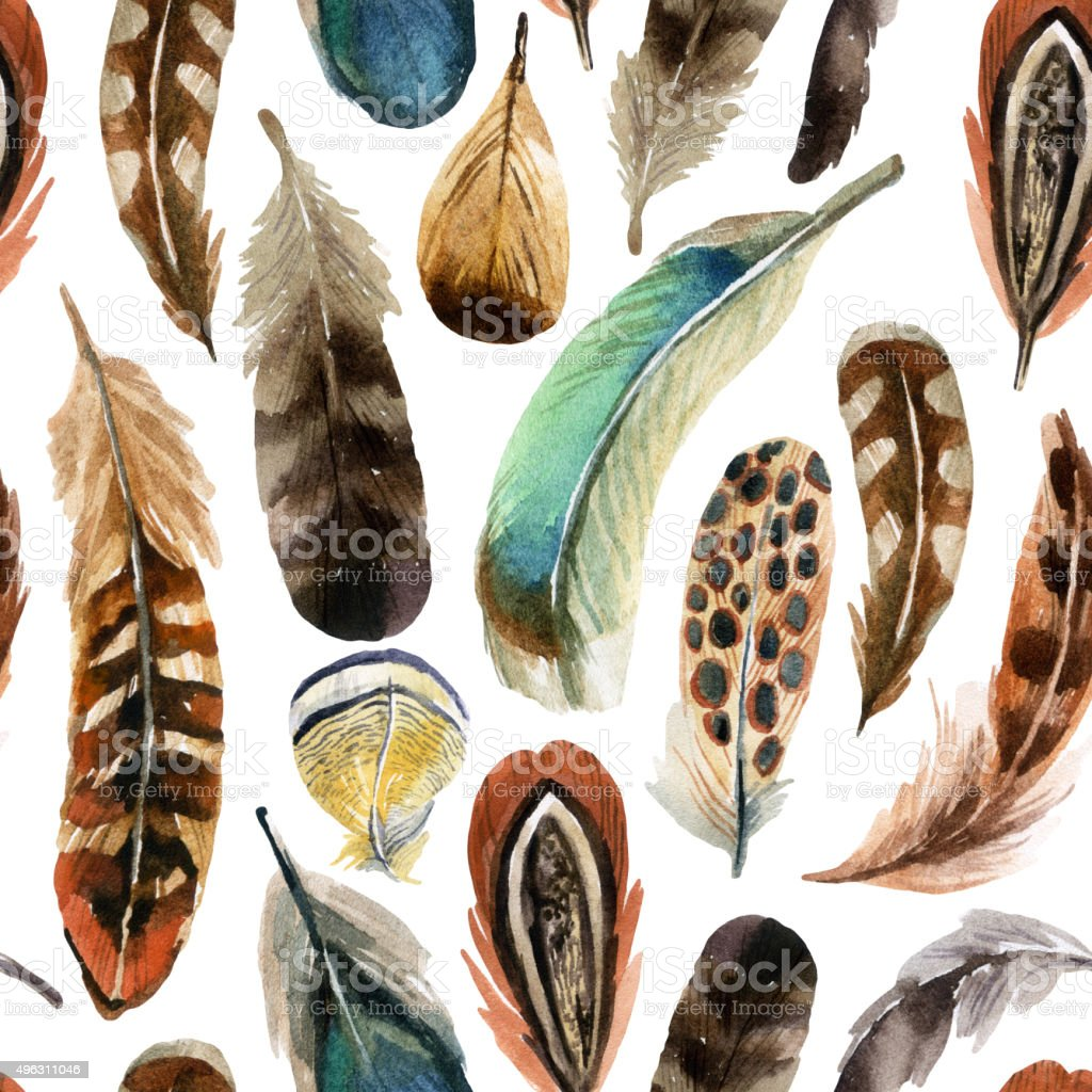watercolor feather background vector art illustration