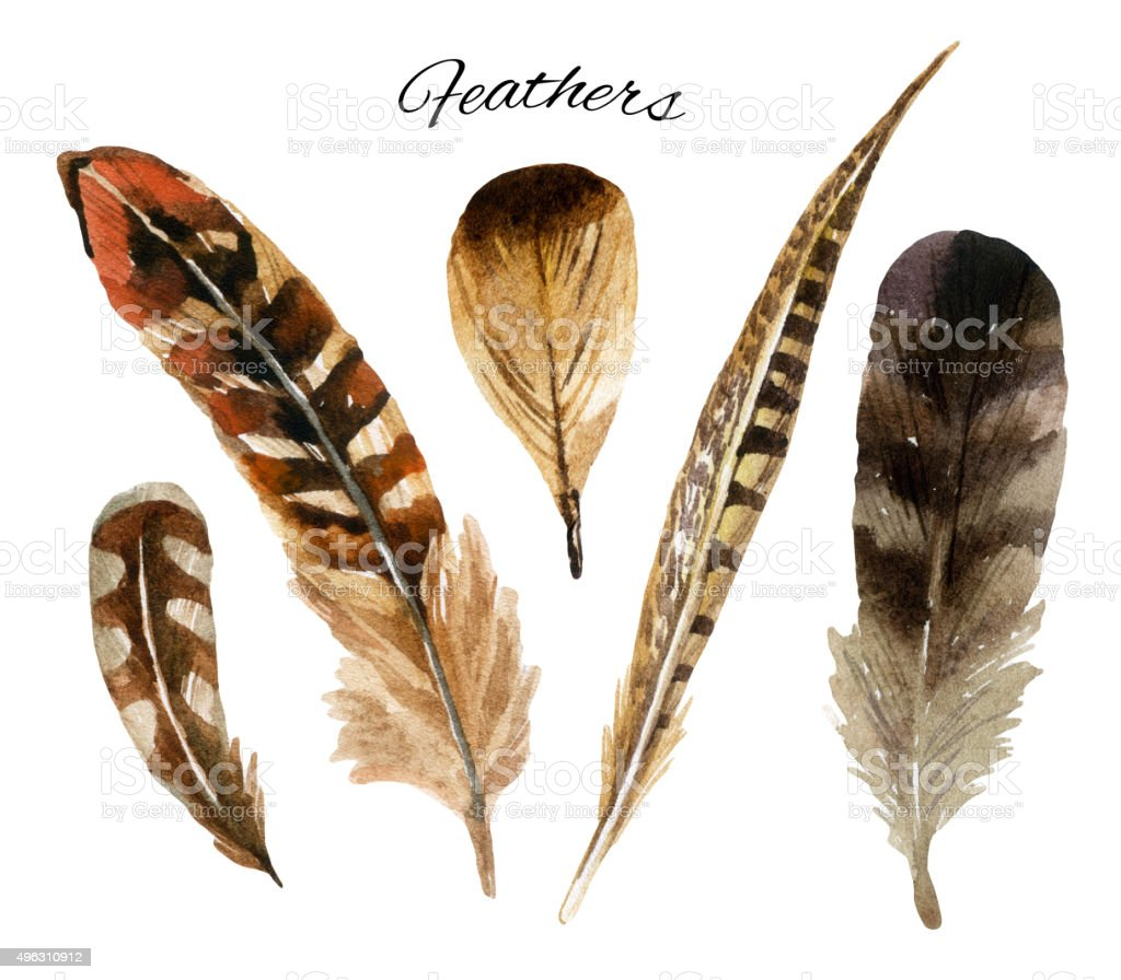 how to draw eagle feathers