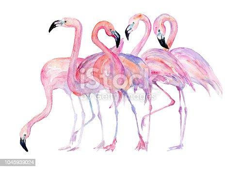 istock Watercolor flamingo. Painted image. 1045939024