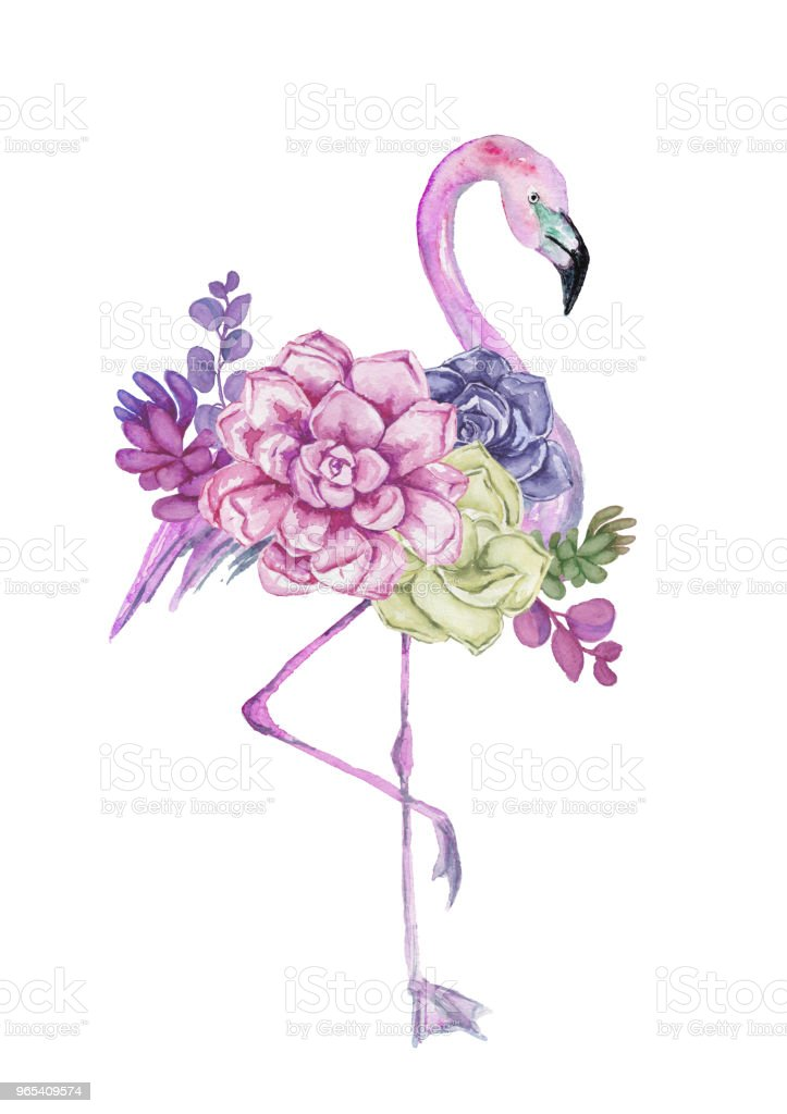 Watercolor flamingo with exotic flowers. Hand drawn illustration. royalty-free watercolor flamingo with exotic flowers hand drawn illustration stock vector art & more images of abstract