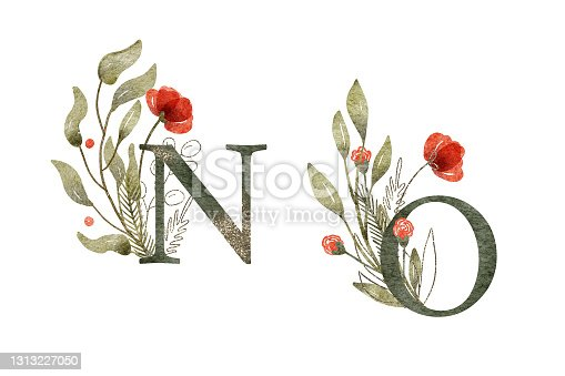 istock Watercolor floral arrangements with N and O letters 1313227050