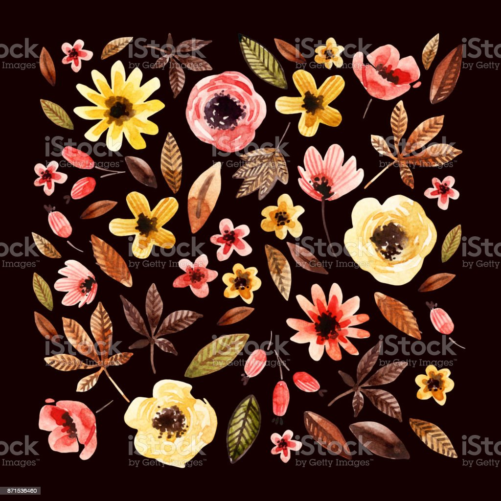Watercolor floral elements square arranged on dark background. vector art illustration