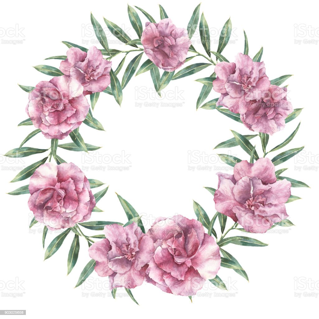 Watercolor Floral Exotic Wreath Hand Painted Border With Oleander