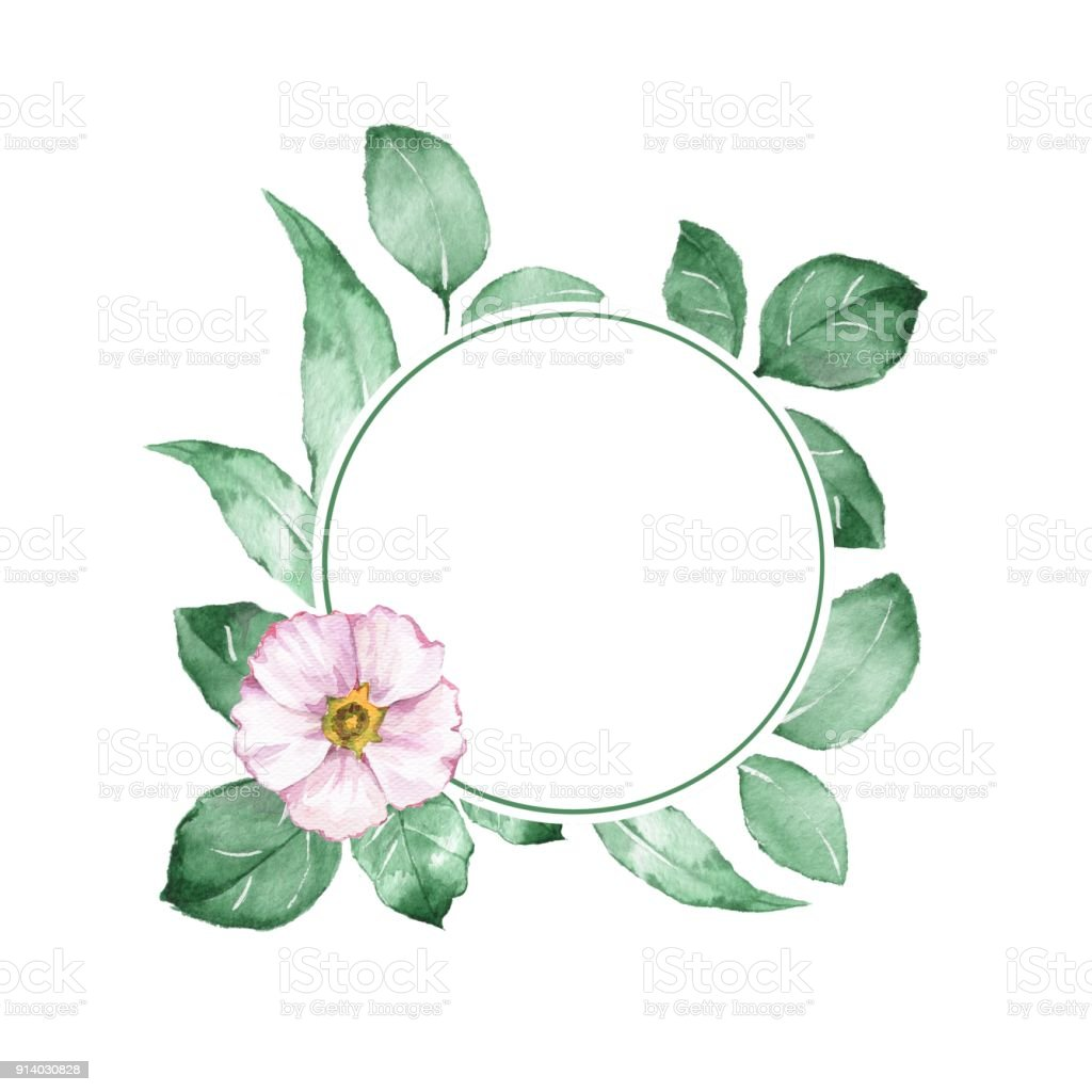 Watercolor Floral Frame Background With White Flower 2 Stock Vector