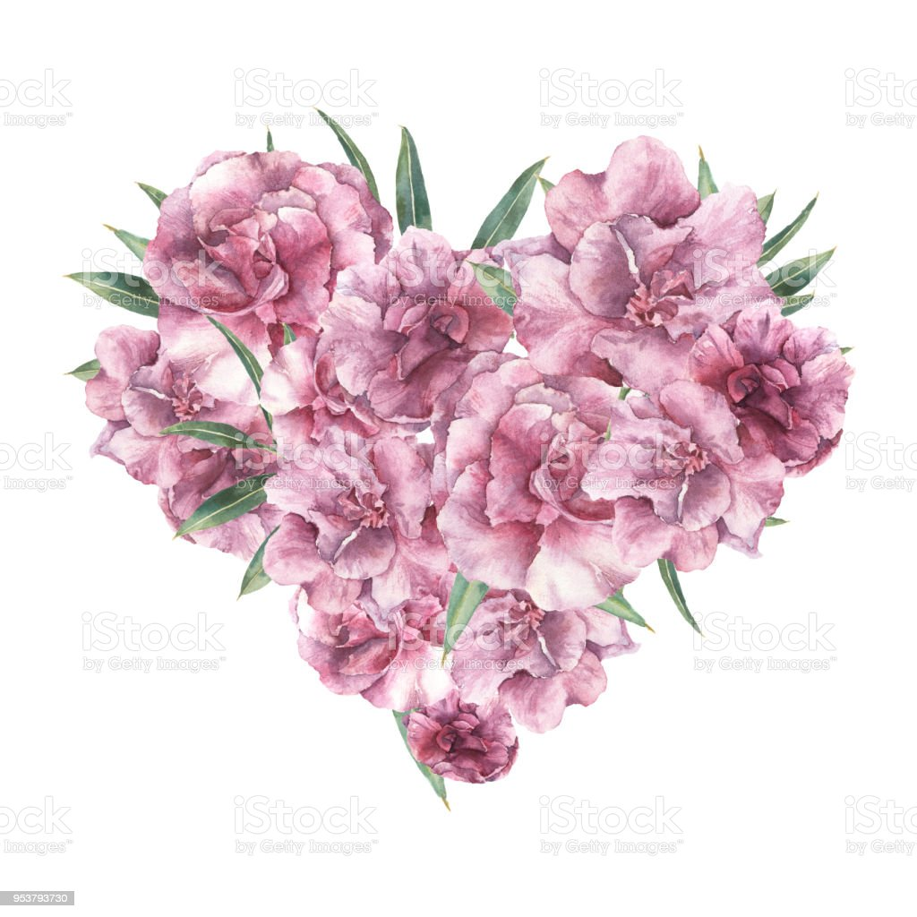 Watercolor Floral Heart With Oleander Flowers Hand Painted Bouquet