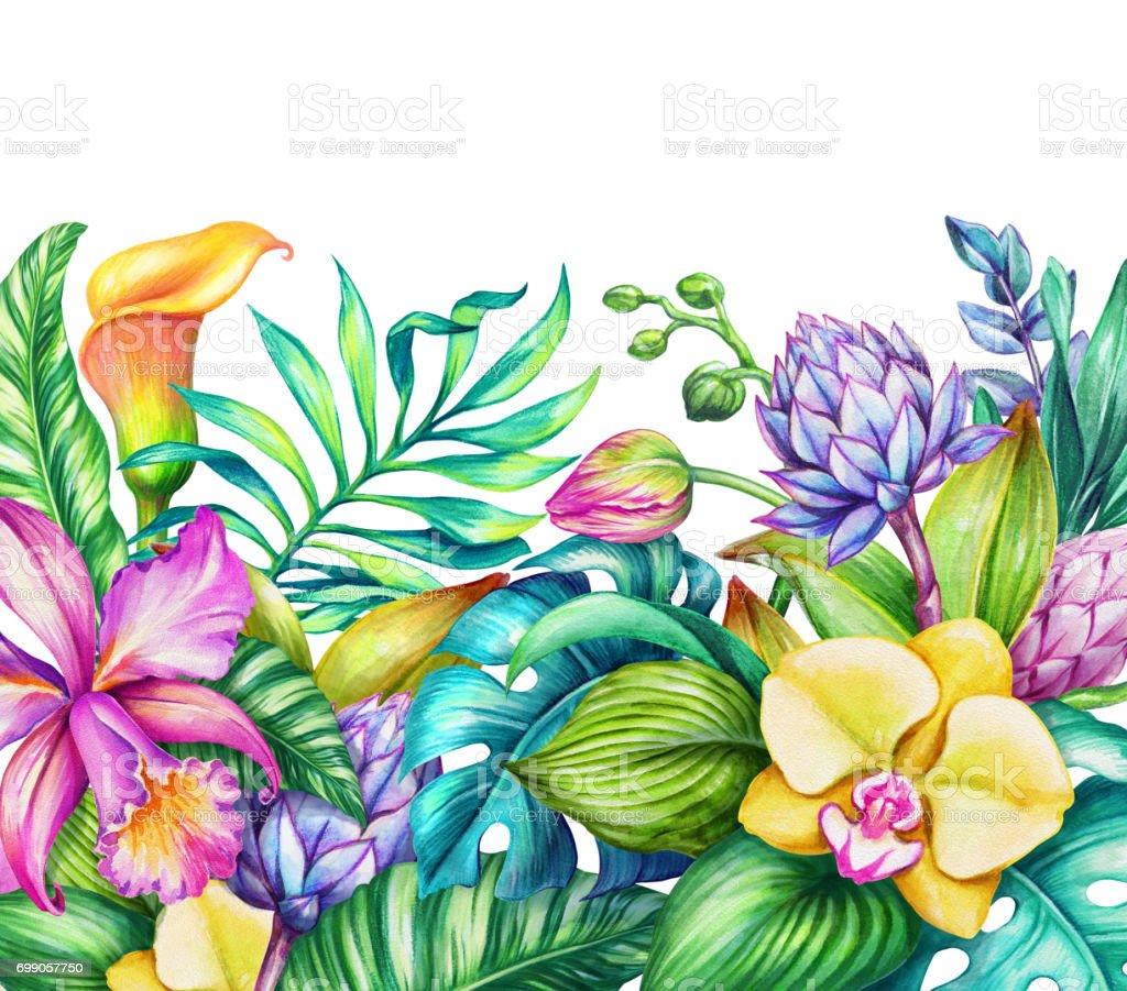 Aquarell Blumen Illustration Paradies Natur Tropische Blumen Rahmen ...