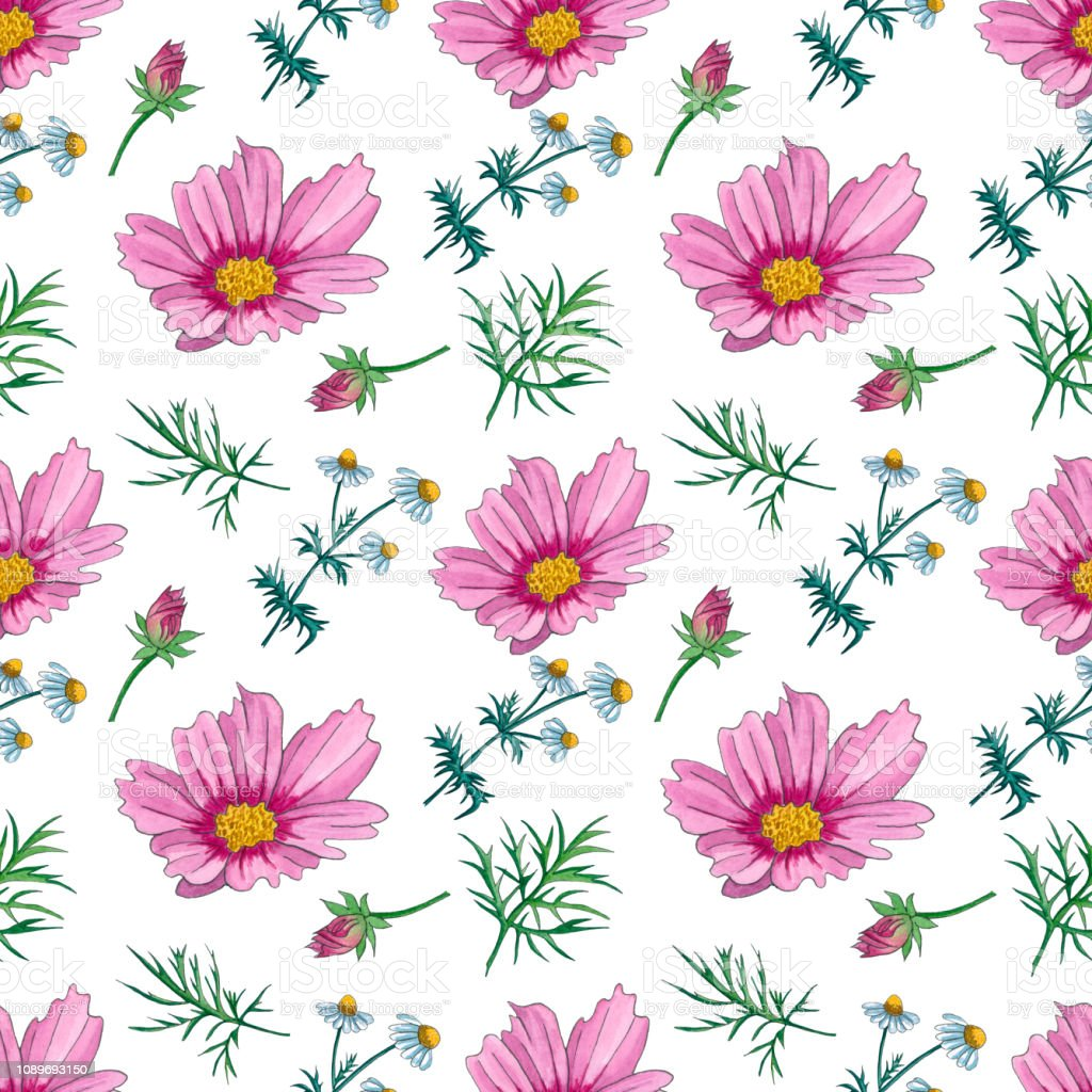 Watercolor Floral Pattern With Wildflowers Delicate Seamless