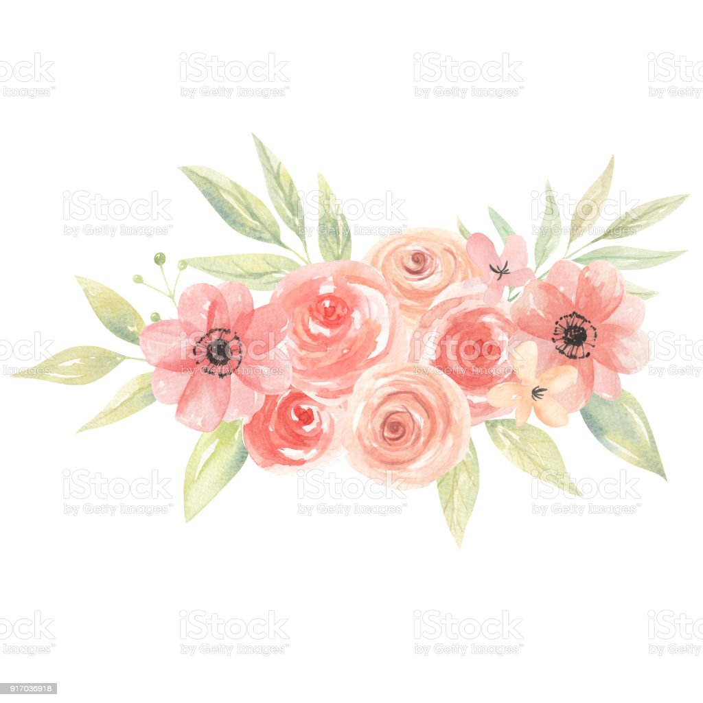 Watercolor Floral Peach Coral Tropical Flowers Boutiques Stock ...