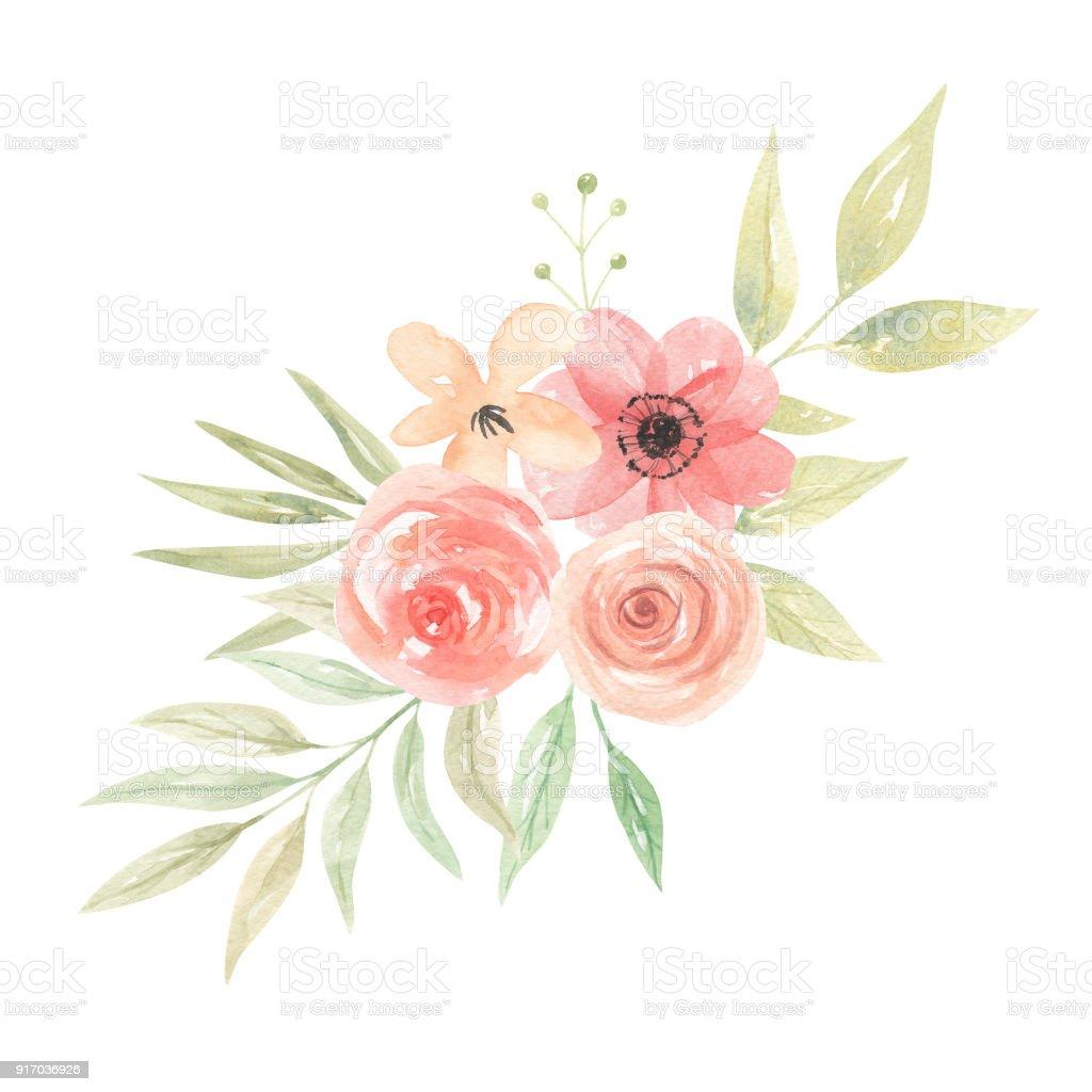 Картинки с коралловыми цветами
