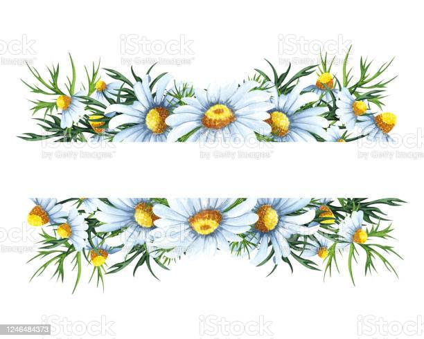 DIY Clip Art Wedding invitations Hand Painted Wild Flowers Wreath /& Bouquets Chamomiles Watercolor Flower Clip Art Greeting card