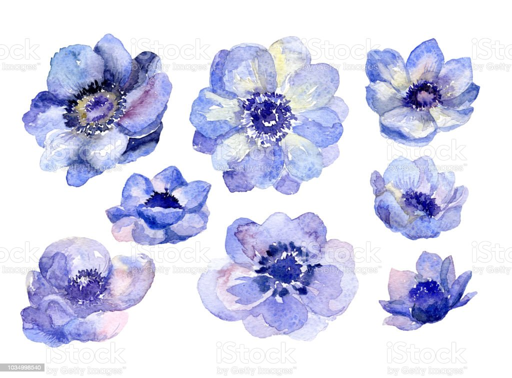 Watercolor flower buds set for wedding card royalty-free watercolor flower buds set for wedding card stock illustration - download image now