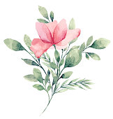 istock Watercolor Flower White background 1213037749