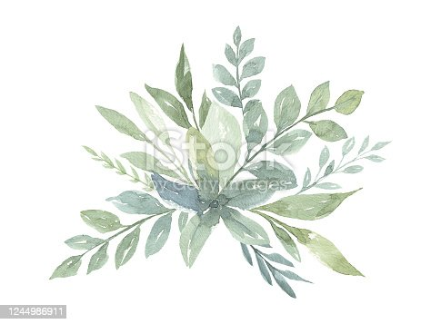 istock Watercolor Flower White background 1244986911