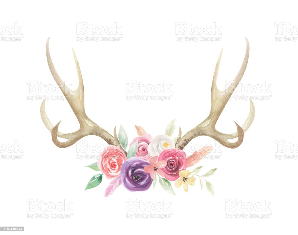 Watercolor Flowers Florals Antlers Deer Stag Horns Bone Painted vector art illustration