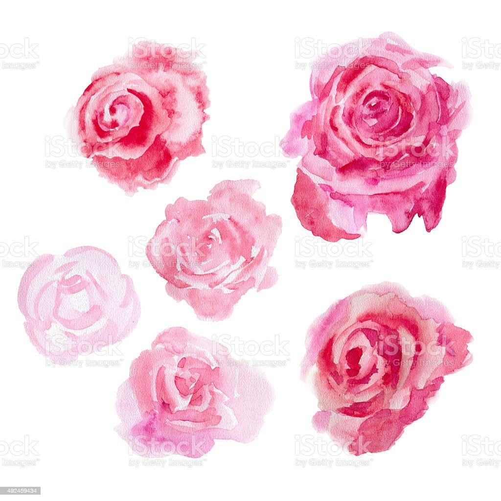 Watercolor flowers roses stock vector art more images of for Watercolor flower images