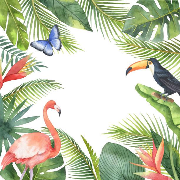 Cuadro acuarela de aves tropicales y exóticas plantas aisladas sobre fondo blanco. - ilustración de arte vectorial