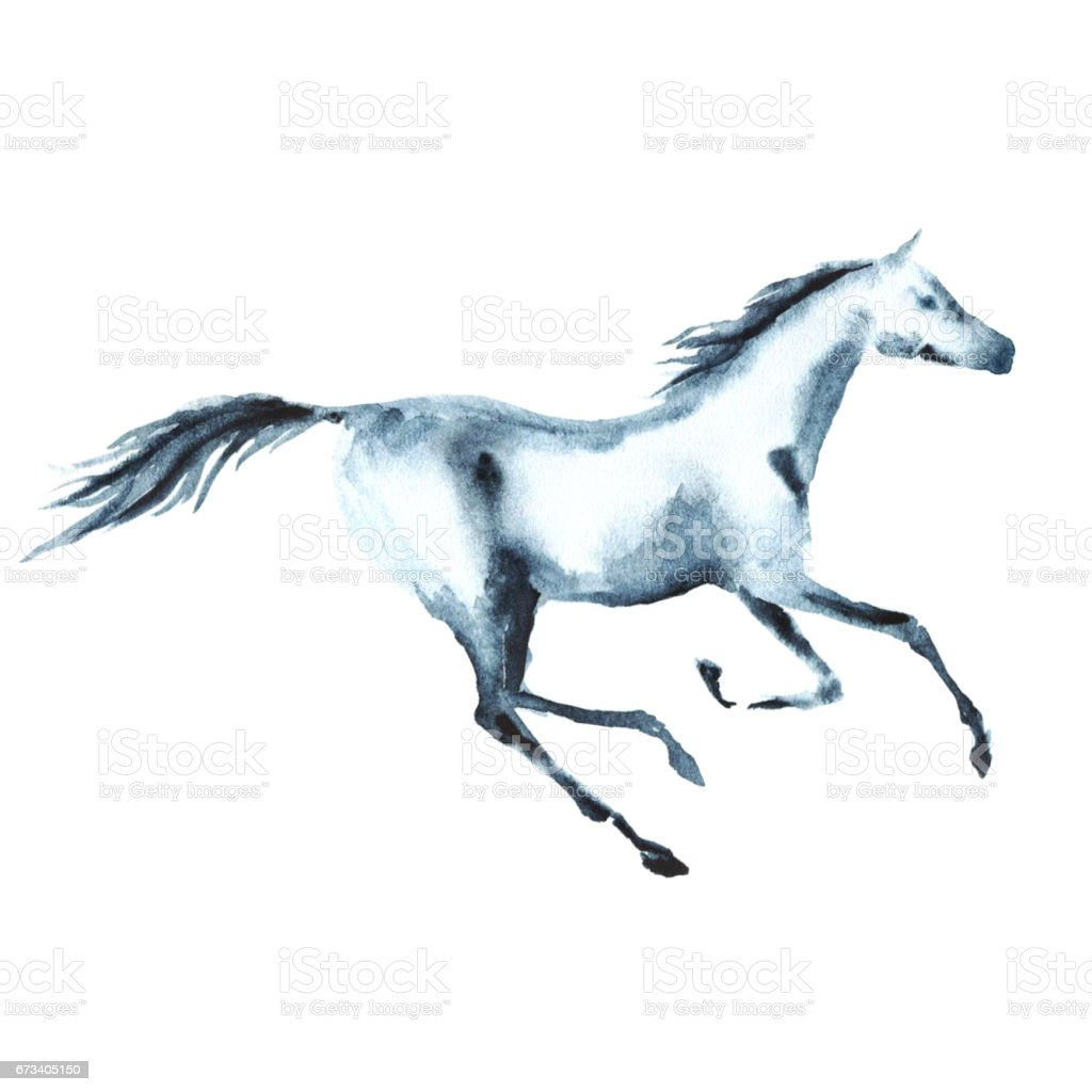 Watercolor galloping horse on white. Hand painting illustration. vector art illustration
