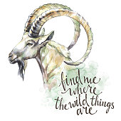 Watercolor goat with handwritten inspiration phrase. Mountain animal. Wildlife art illustration. Can be printed on T-shirts, bags, posters, invitations, cards, phone cases