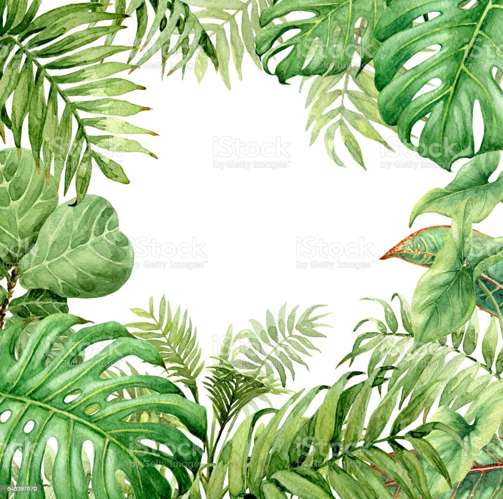 Watercolor green background with tropical plants stock for Plante jungle