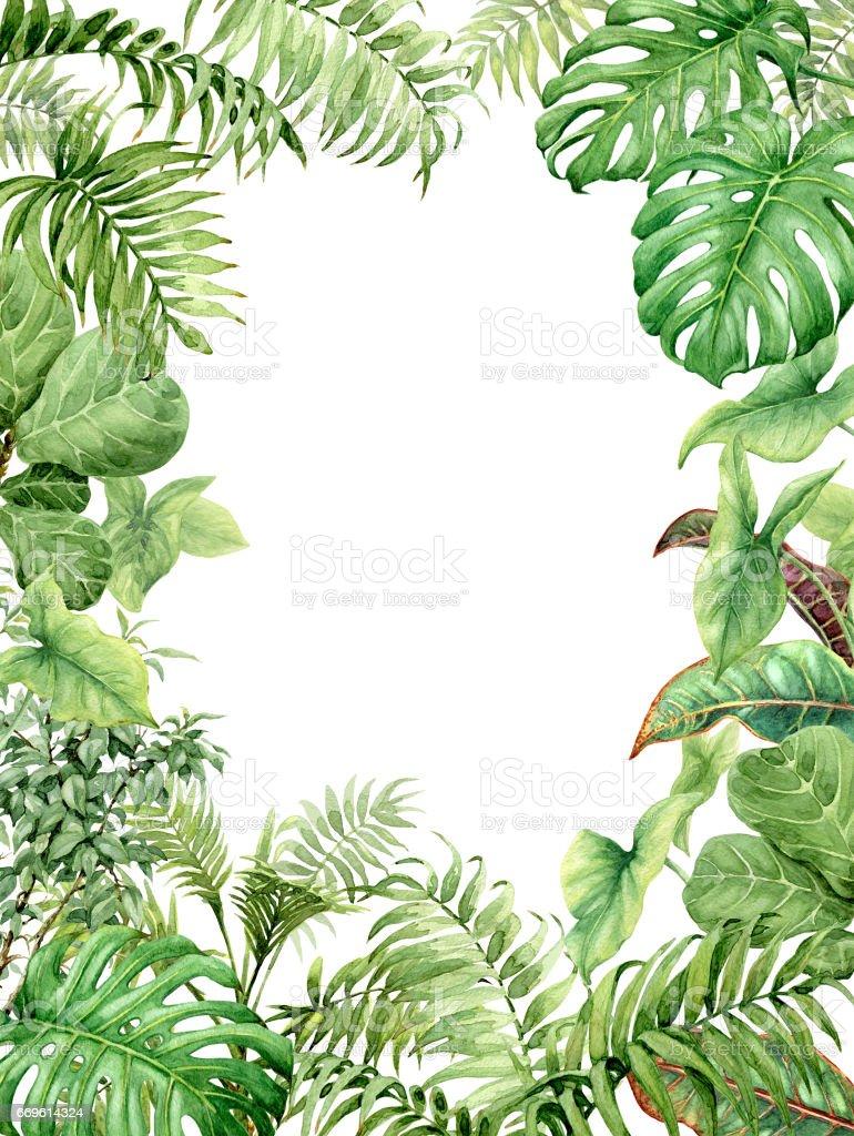Watercolor green background with tropical plants - ilustração de arte em vetor