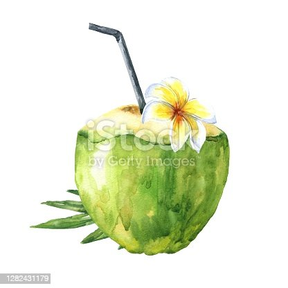 istock Watercolor green coconut with leaves and frangipani tropical flower, with a straw, isolated on white background. Hand drawn food illustration. 1282431179