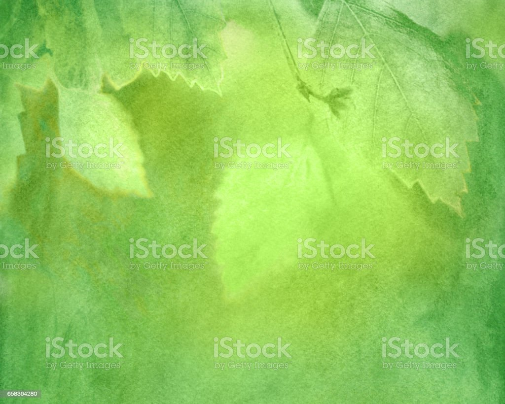 Watercolor green spring background vector art illustration