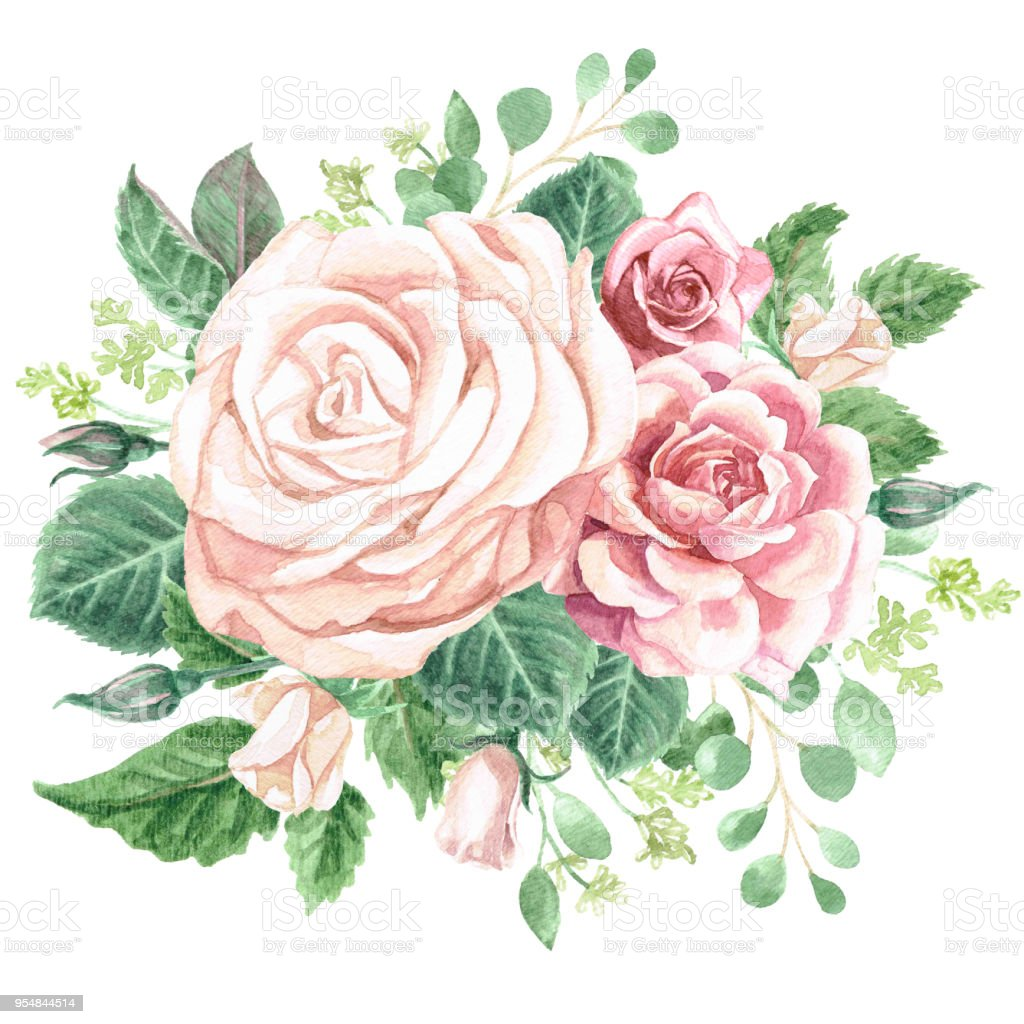 Watercolor Greenery and Roses Bouquet vector art illustration