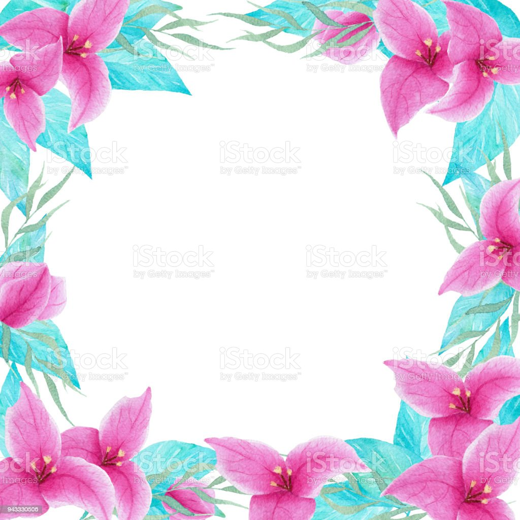 Watercolor Hand Drawn Bouganvillea Flower Colorful Frame Border