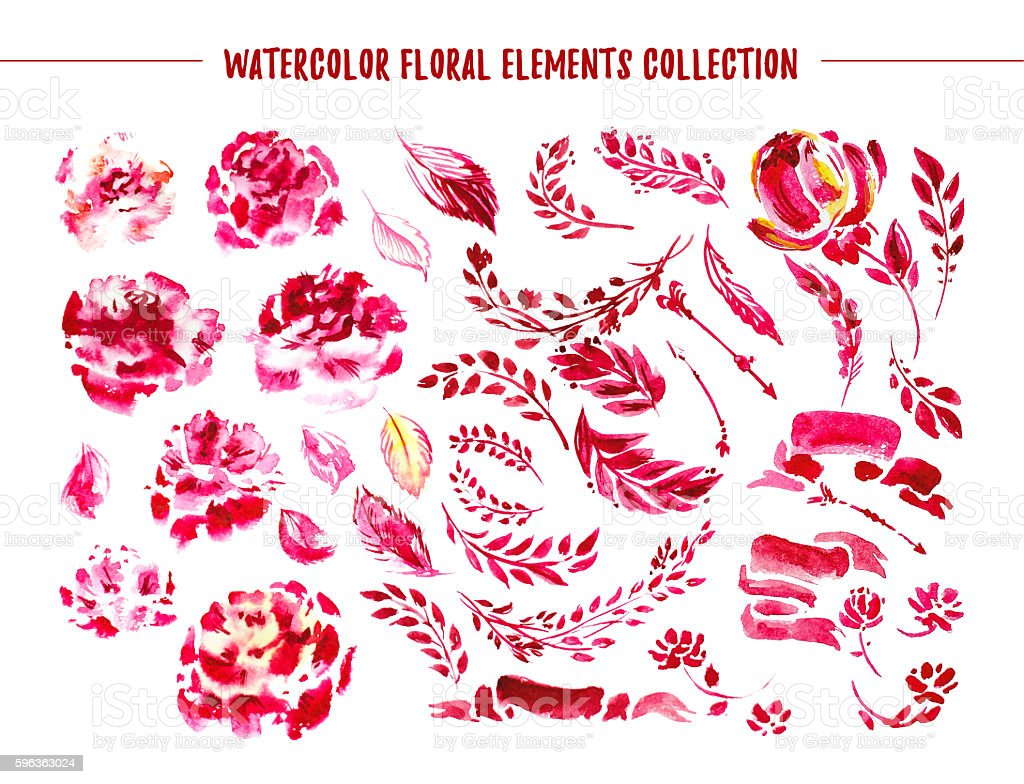Watercolor hand drawn floral collection. royalty-free watercolor hand drawn floral collection stock vector art & more images of blossom
