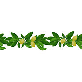 Watercolor hand drawn seamles bordure patteren with lemons and green leaves