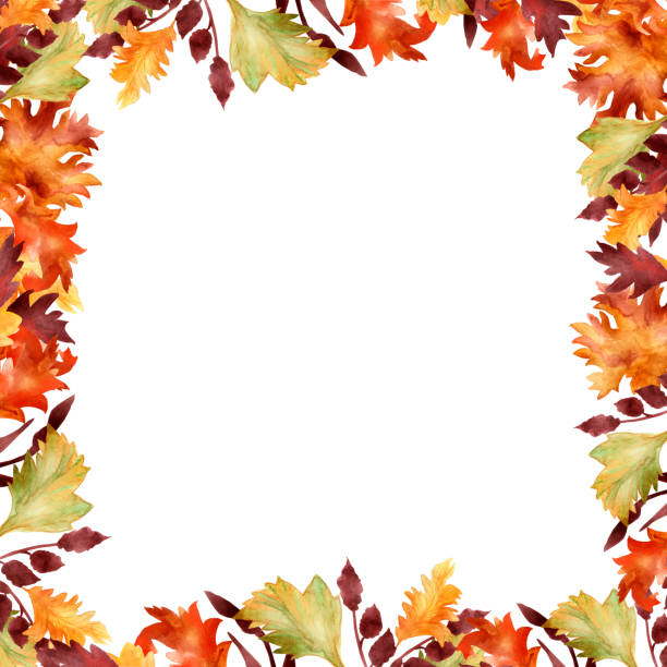Watercolor hand painted autumn banner frame with different yellow, red, orange and maroon leaves and branches for invitations and greeting cards with the space for text Watercolor hand painted autumn banner frame with different yellow, red, orange and maroon leaves and branches for invitations and greeting cards with the space for text autumn borders stock illustrations