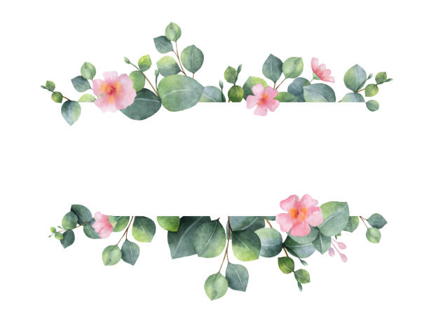 watercolor hand painted green floral banner with eucalyptus and pink flowers. - flowers stock illustrations, clip art, cartoons, & icons