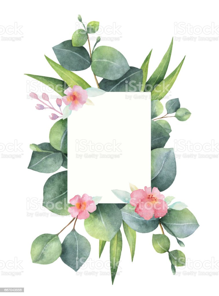 Watercolor hand painted green floral card with eucalyptus and pink flowers isolated on white background. vector art illustration